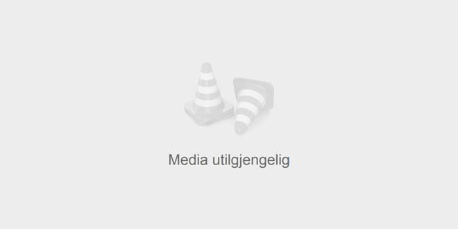 """Utdanningsforbundets logo øverst til venstre og tittelen til brosjyren nederst til høyre, """"Ny som tillitsvalgt på arbeidsplassen""""."""