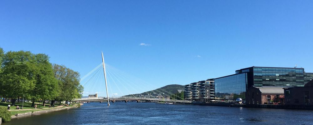 Drammenselva gjennom Drammen by.