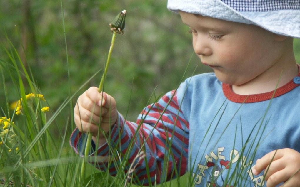 Barn er transparente og preges av alt de opplever i verden. I dagens samfunn mener jeg vi må tenke nøye igjennom hva vi mener styrker barna på ferden, skriver Therese Halle Isene. Foto: Ilona Jędrusiak, FreeImages