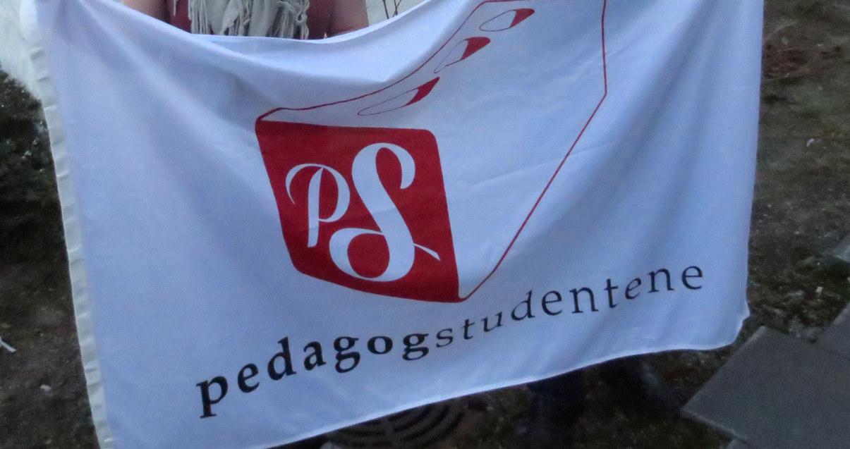 Pedagogstudentene i Utdanningsforbundet beholder navnet. Arkivfoto: Utdanning