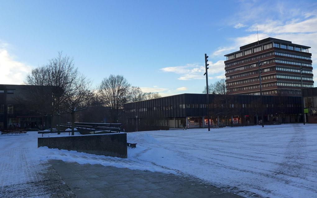 Åtte menn og fire kvinner har søkt stillingen som ny direktør ved Universitetet i Oslo. Foto: Marianne Ruud
