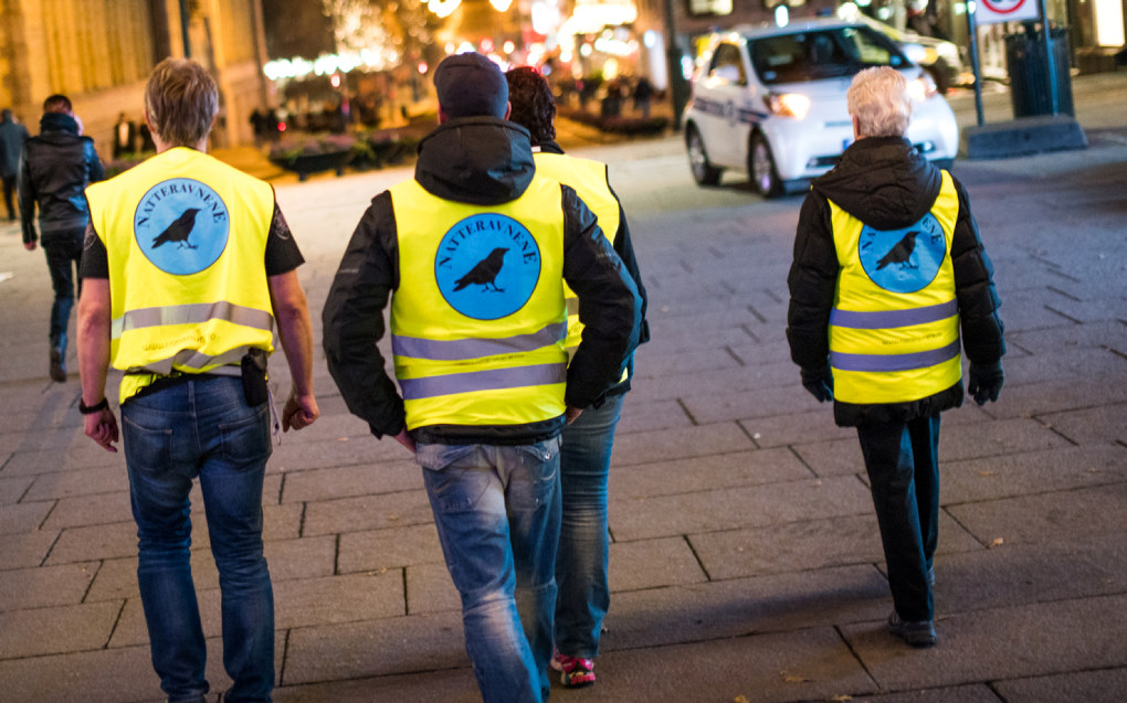 Drammen kommune vil betale 2.000 kroner per natteravn. Pengene skal gå til nærmiljøene. Foto: Kyle Mayr
