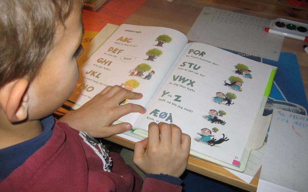I begynnerlesingen er det viktig at alle ord og setninger som eleven skal lese, er med full forståelse, skriver Odd Haugstad. Arkivfoto: Harald Wollebæk, Utdanning