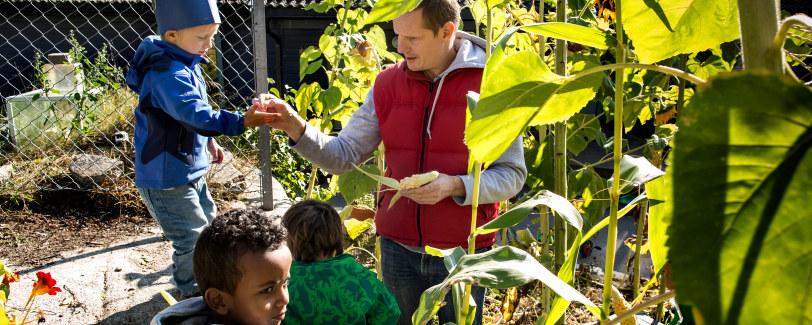 Bilde barn og voksen som studerer blomsterfrø.