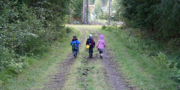 Bilde av tre små barn sett bakfra gående på en skogsbilvei.