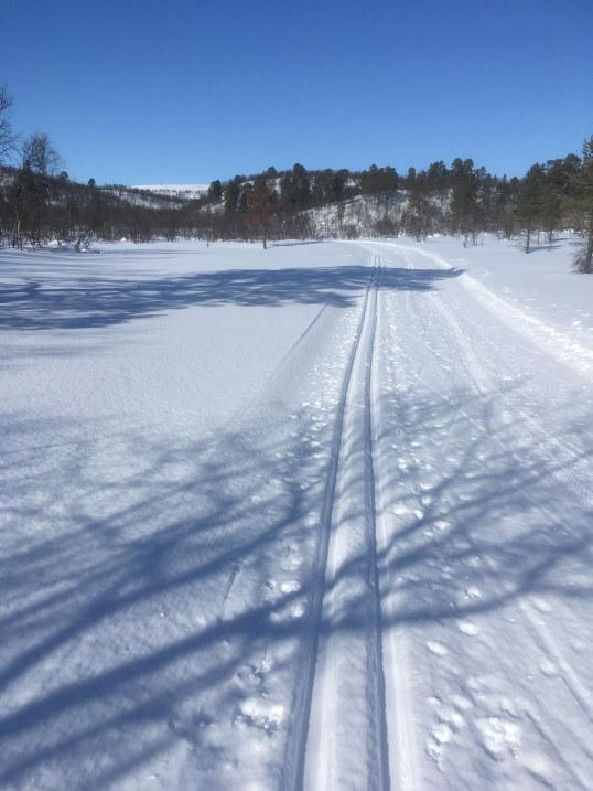 Skispor og fjell
